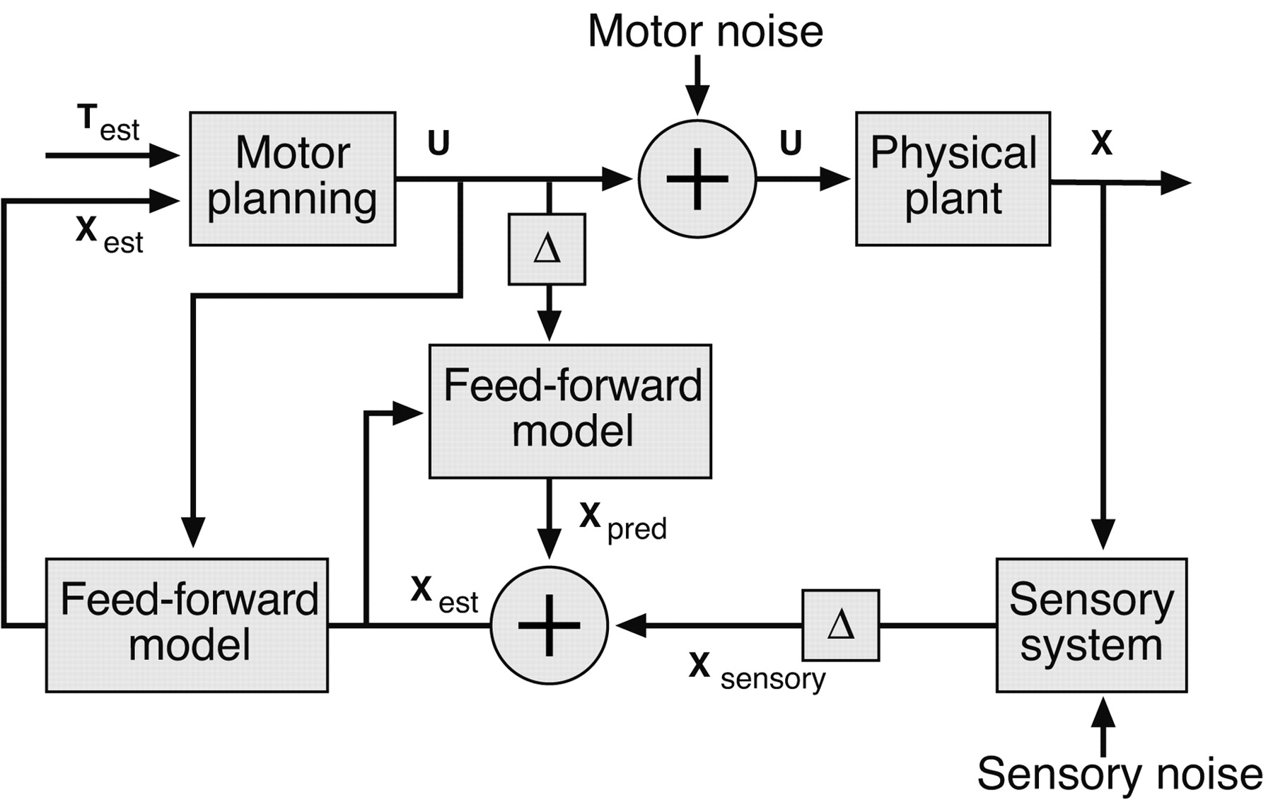 Visual Feedback Control Of Hand Movements Journal Neuroscience Diagram The Same Motor System Shown By Block Download Figure
