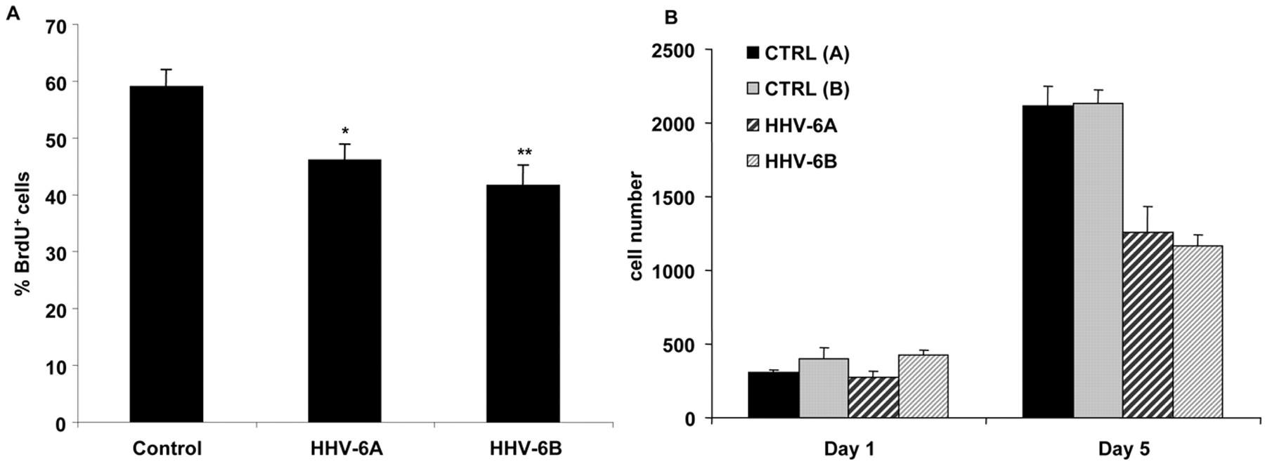 Infection with an Endemic Human Herpesvirus Disrupts
