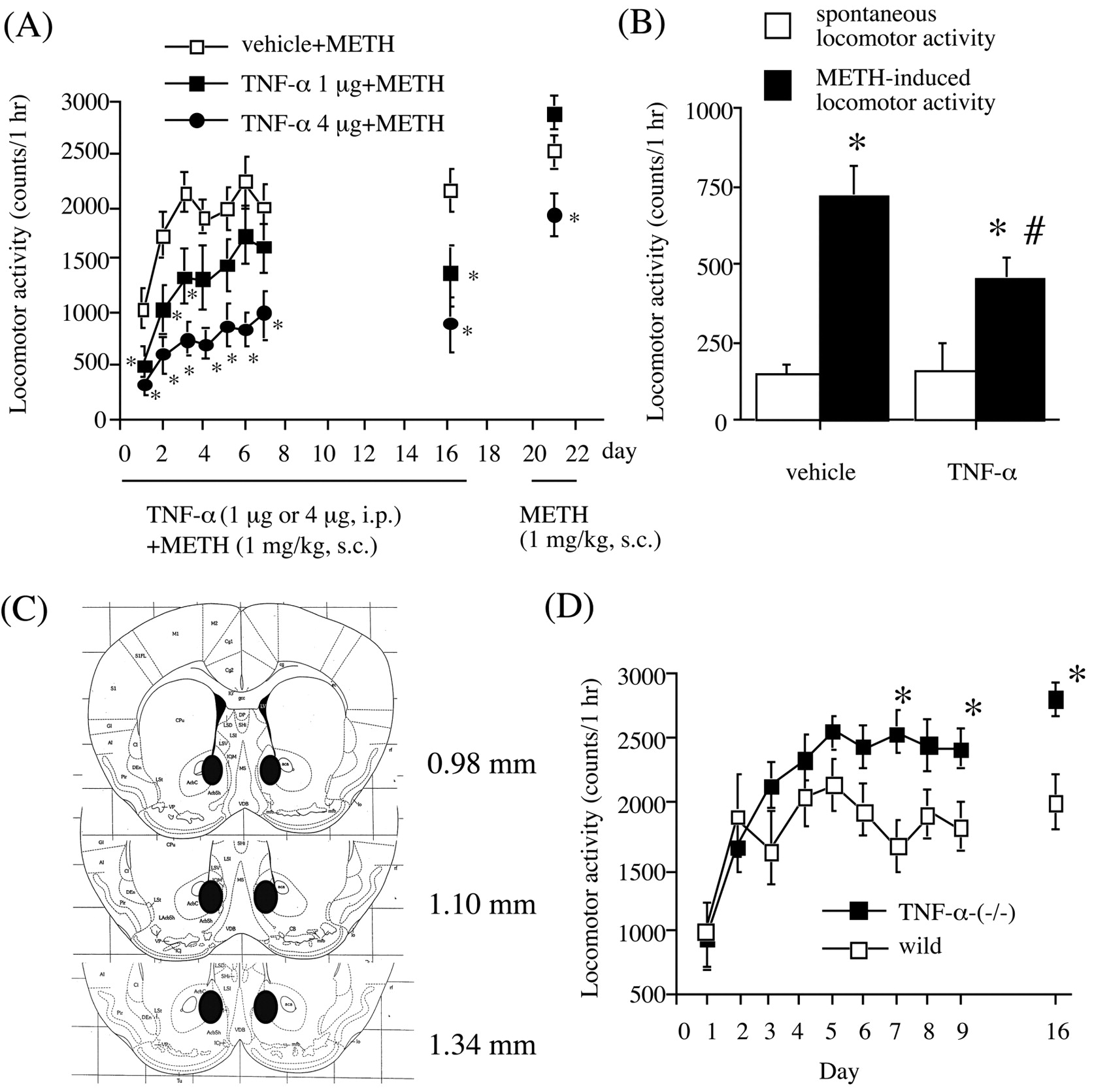 Role of Tumor Necrosis Factor-α in Methamphetamine-Induced Drug