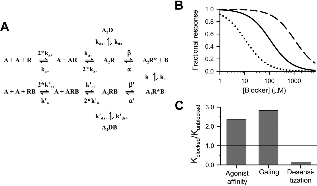 Amantadine Inhibits NMDA Receptors by Accelerating Channel
