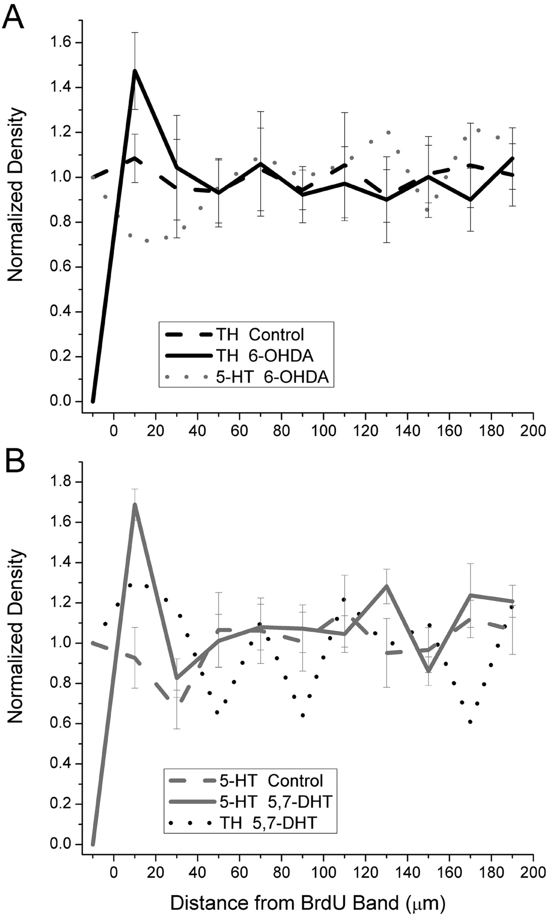 Control of Cellular Pattern Formation in the Vertebrate Inner Retina ...