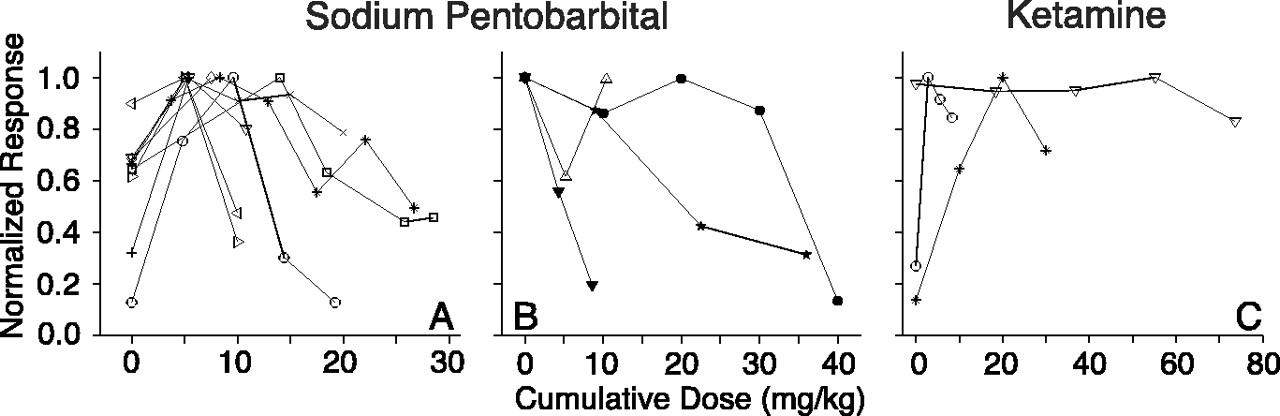 Anesthetics Change the Excitation/Inhibition Balance That Governs