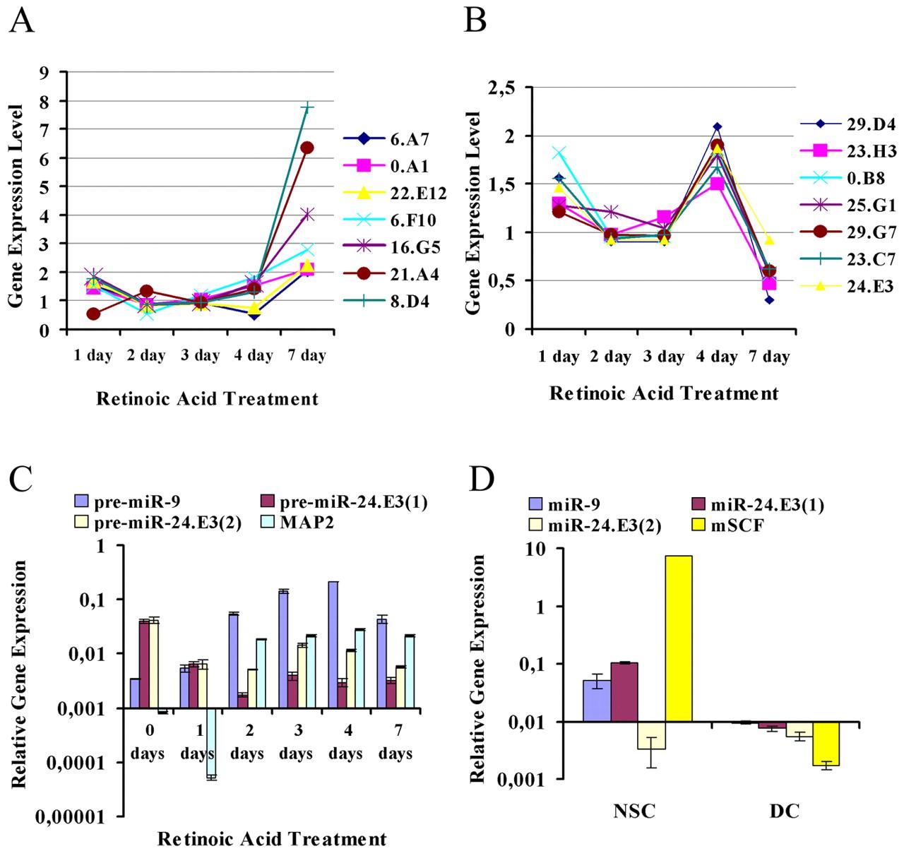 Telencephalic Embryonic Subtractive Sequences: A Unique