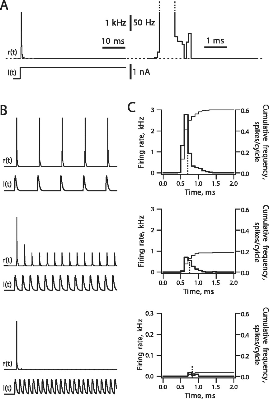 Two Dimensional Time Coding In The Auditory Brainstem Journal Of R And Rc Firing Circuit Diagram Download Figure