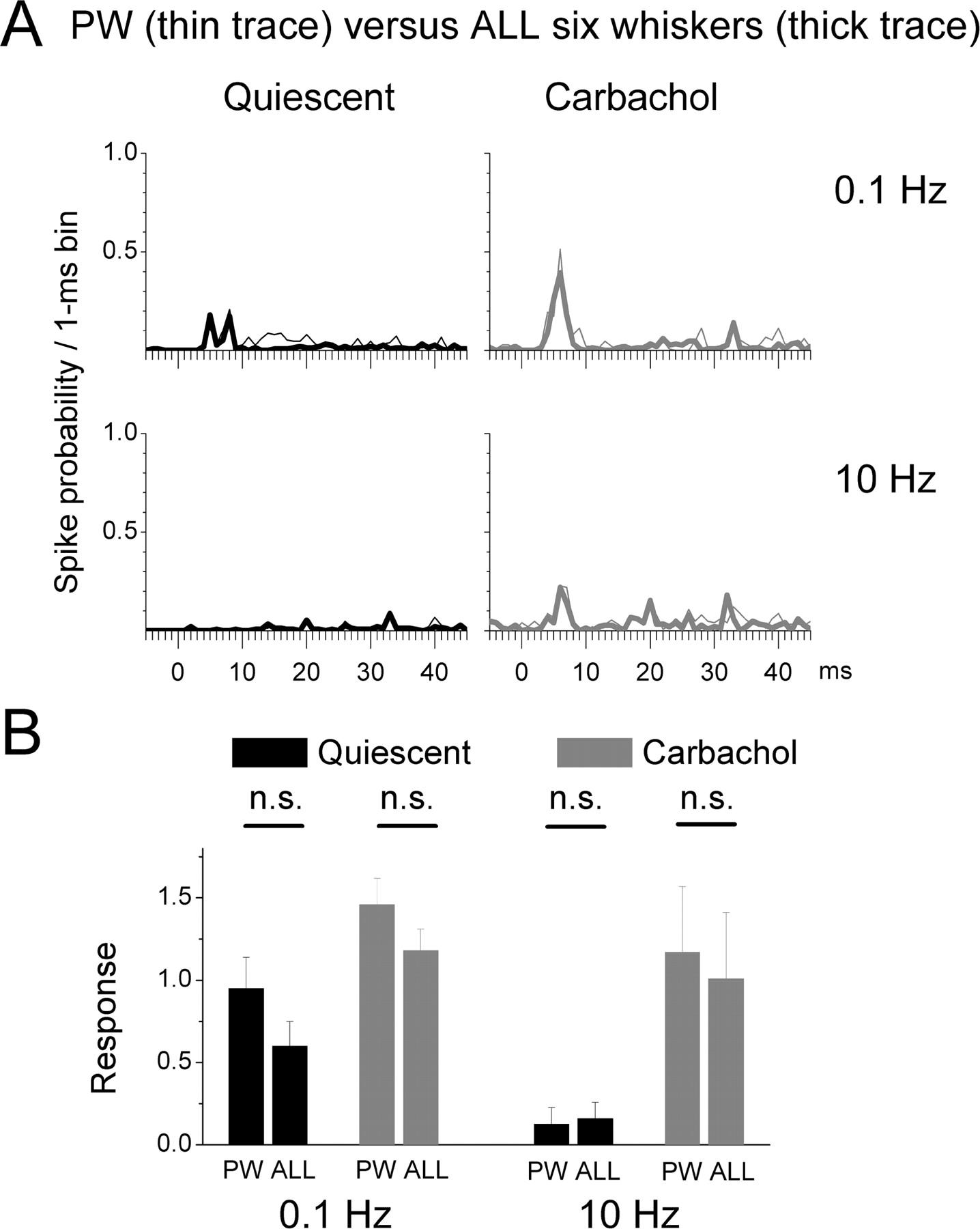Spatiotemporal Gating of Sensory Inputs in Thalamus during