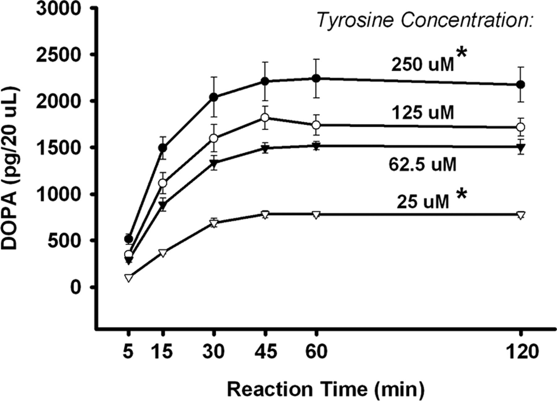 L Tyrosine Contributes To 34 Methylenedioxymethamphetamine Download Figure