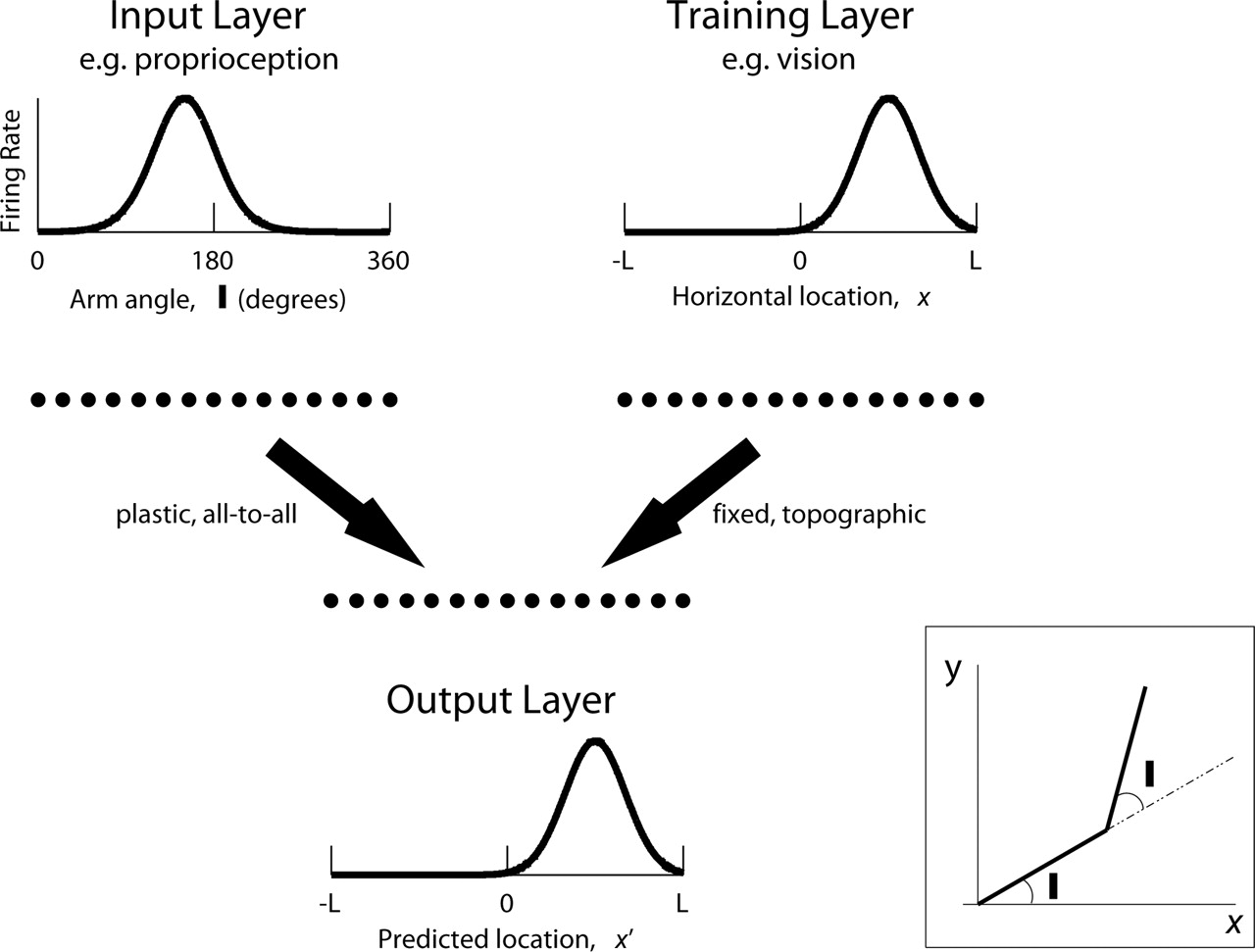 Learning Cross-Modal Spatial Transformations through Spike Timing