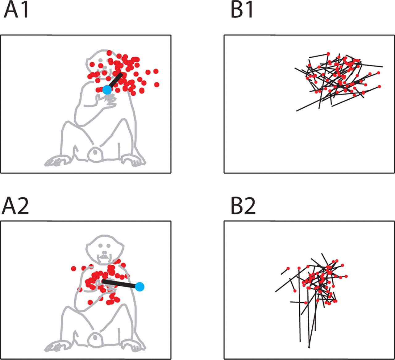Relationship Between Unconstrained Arm Movements And Single Neuron Figure 17 Block Diagram For Human Movement Based Emg Signal Download