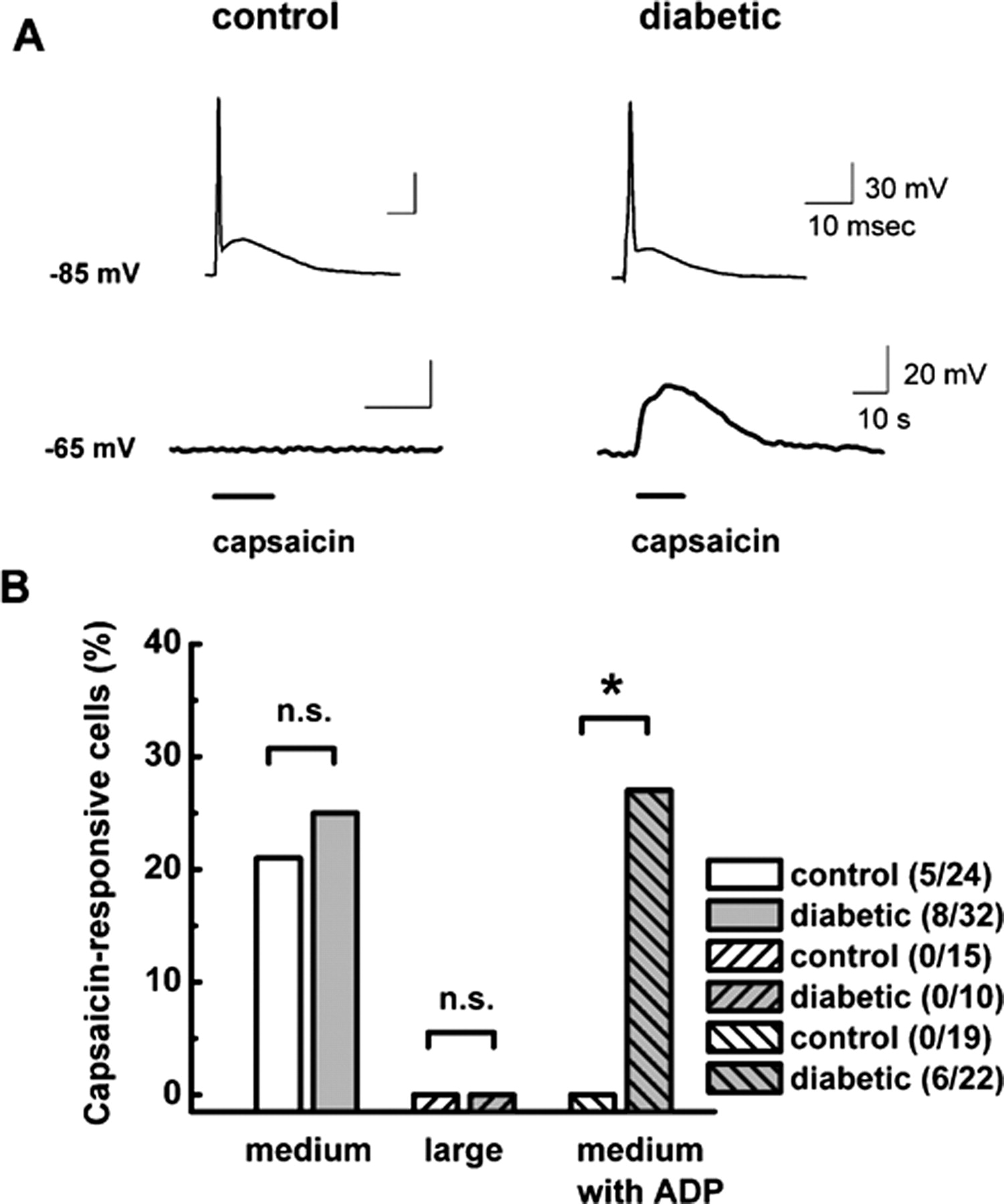 Cell specific alterations of t type calcium current in painful download figure ccuart Images