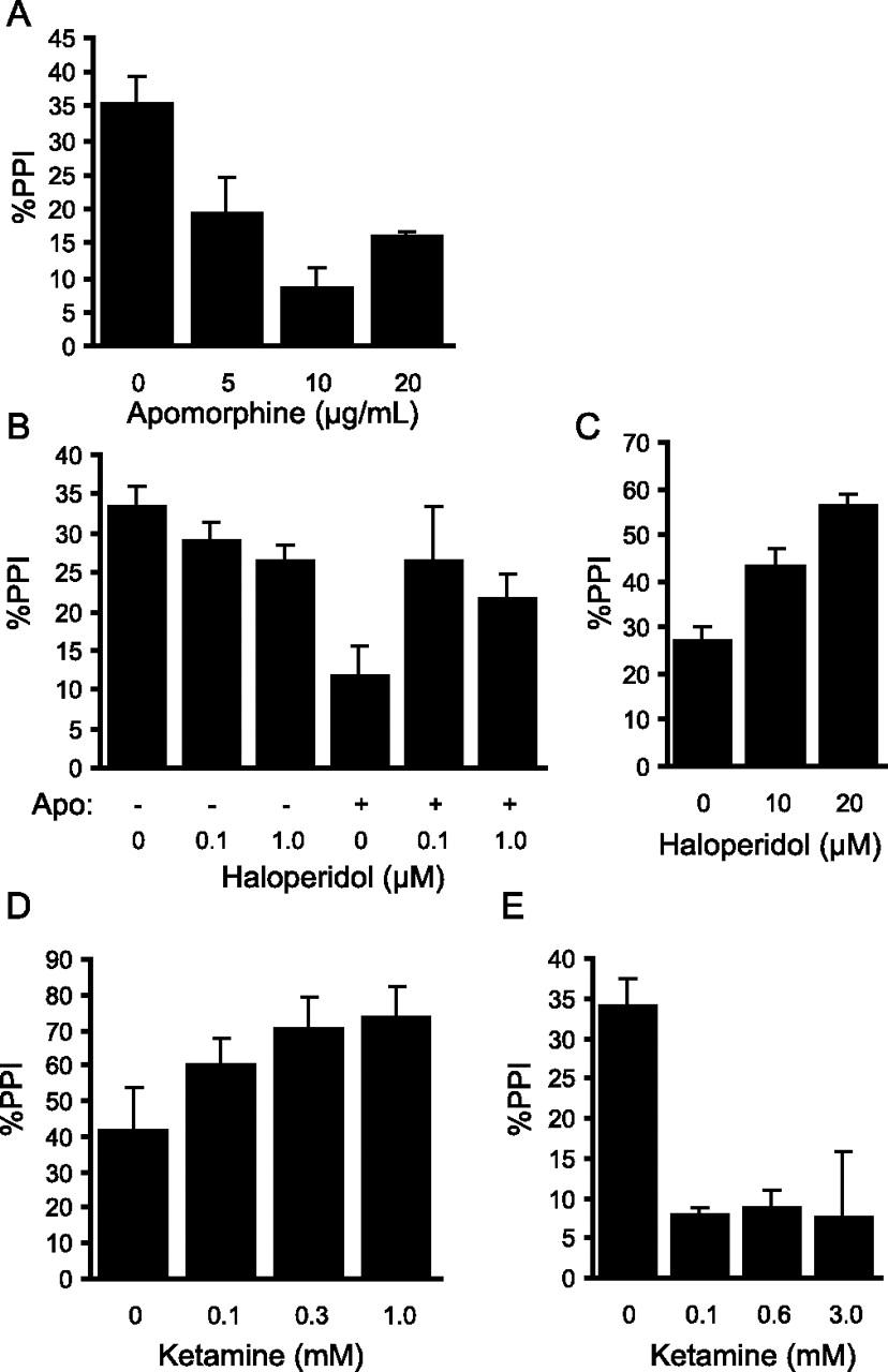 sensorimotor gating in larval zebrafish
