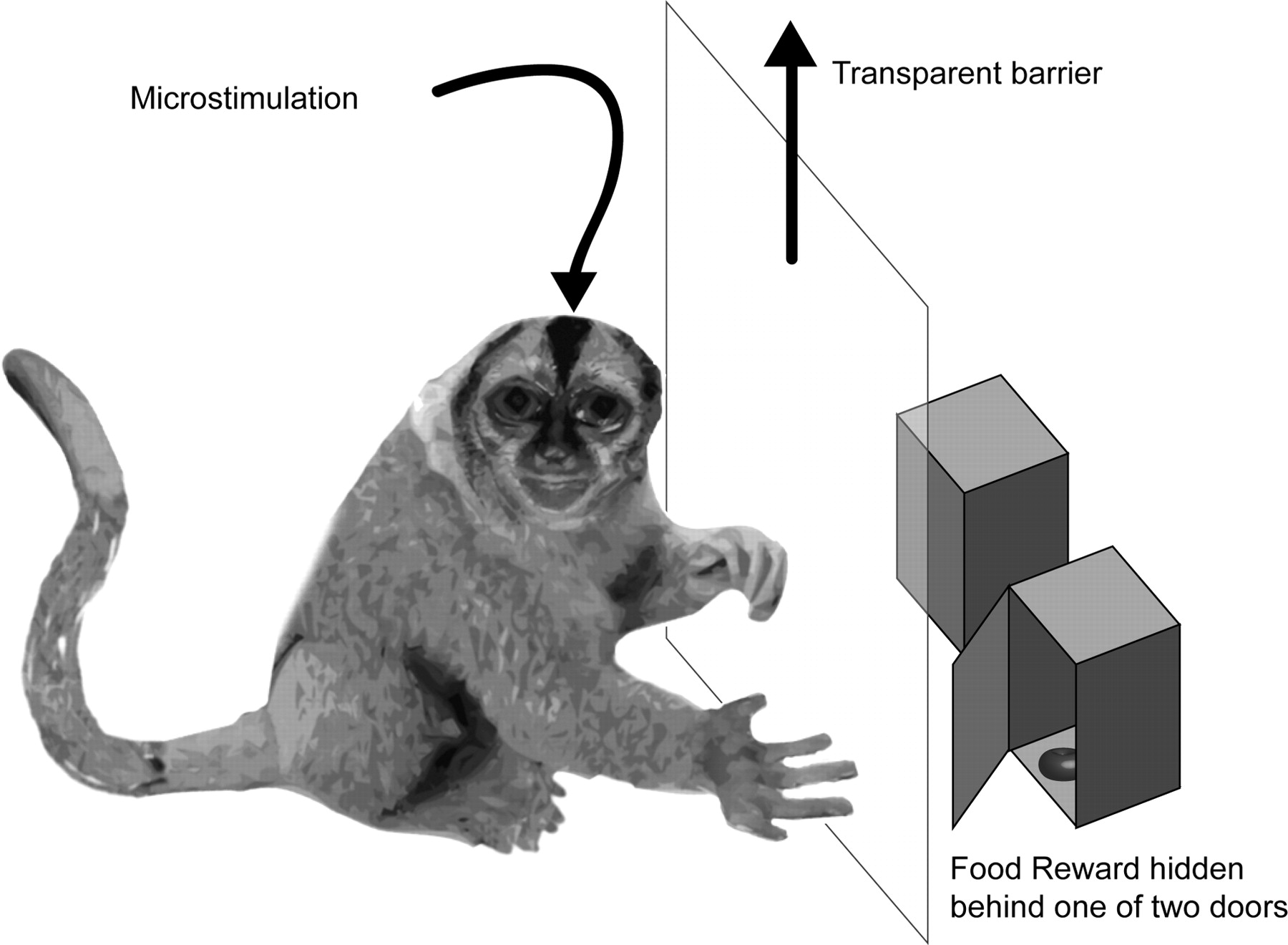 Primate Reaching Cued by Multichannel Spatiotemporal Cortical ...