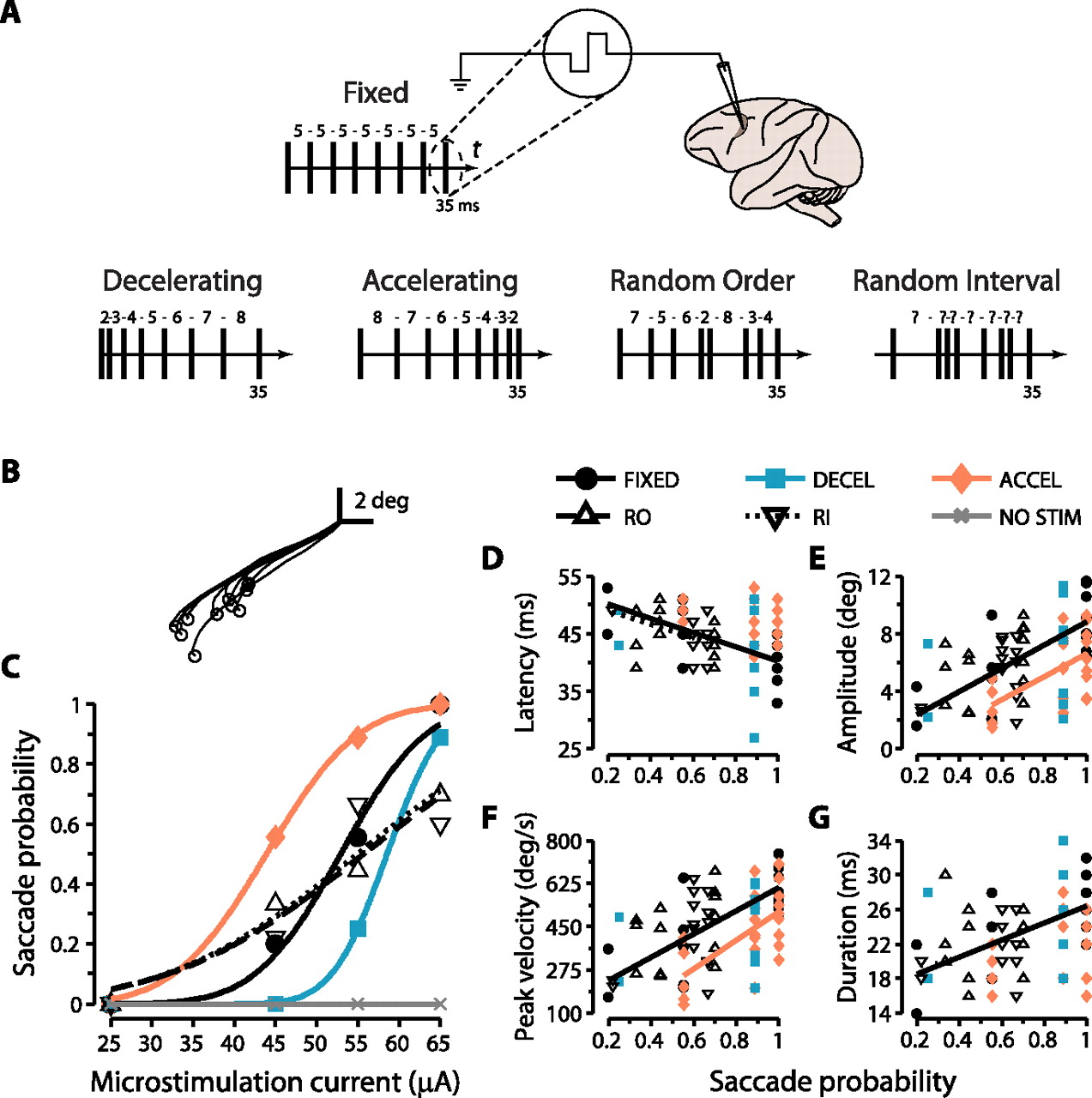 Figure 1 Temporal Patterning Of Saccadic Eye Movement Signals Electrical Diagram Journal Neuroscience