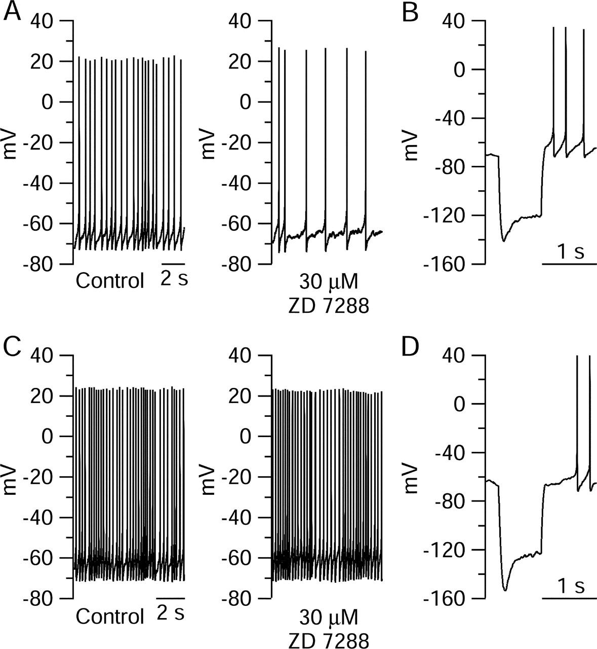 Roles Of Subthreshold Calcium Current And Sodium In Wiring Diagram Lowe 165 Fm Download Figure