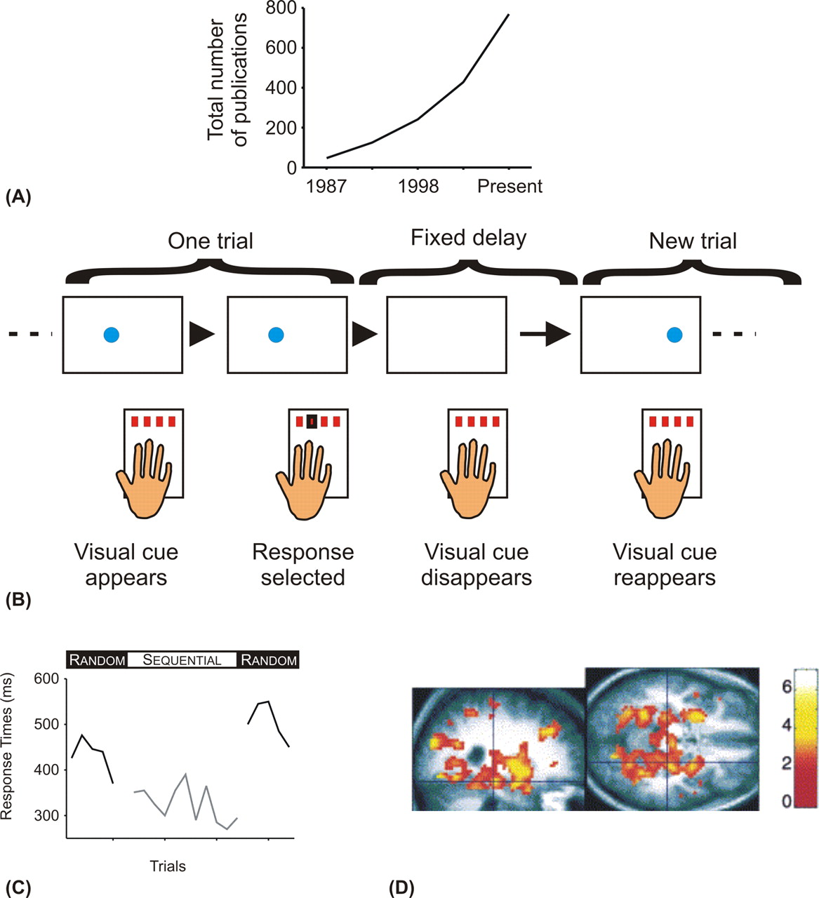 The Serial Reaction Time Task: Implicit Motor Skill Learning ...