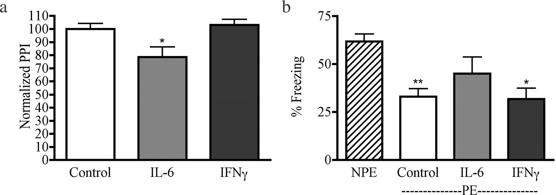 Prenatal Infection May Alter Behavior >> Maternal Immune Activation Alters Fetal Brain Development Through