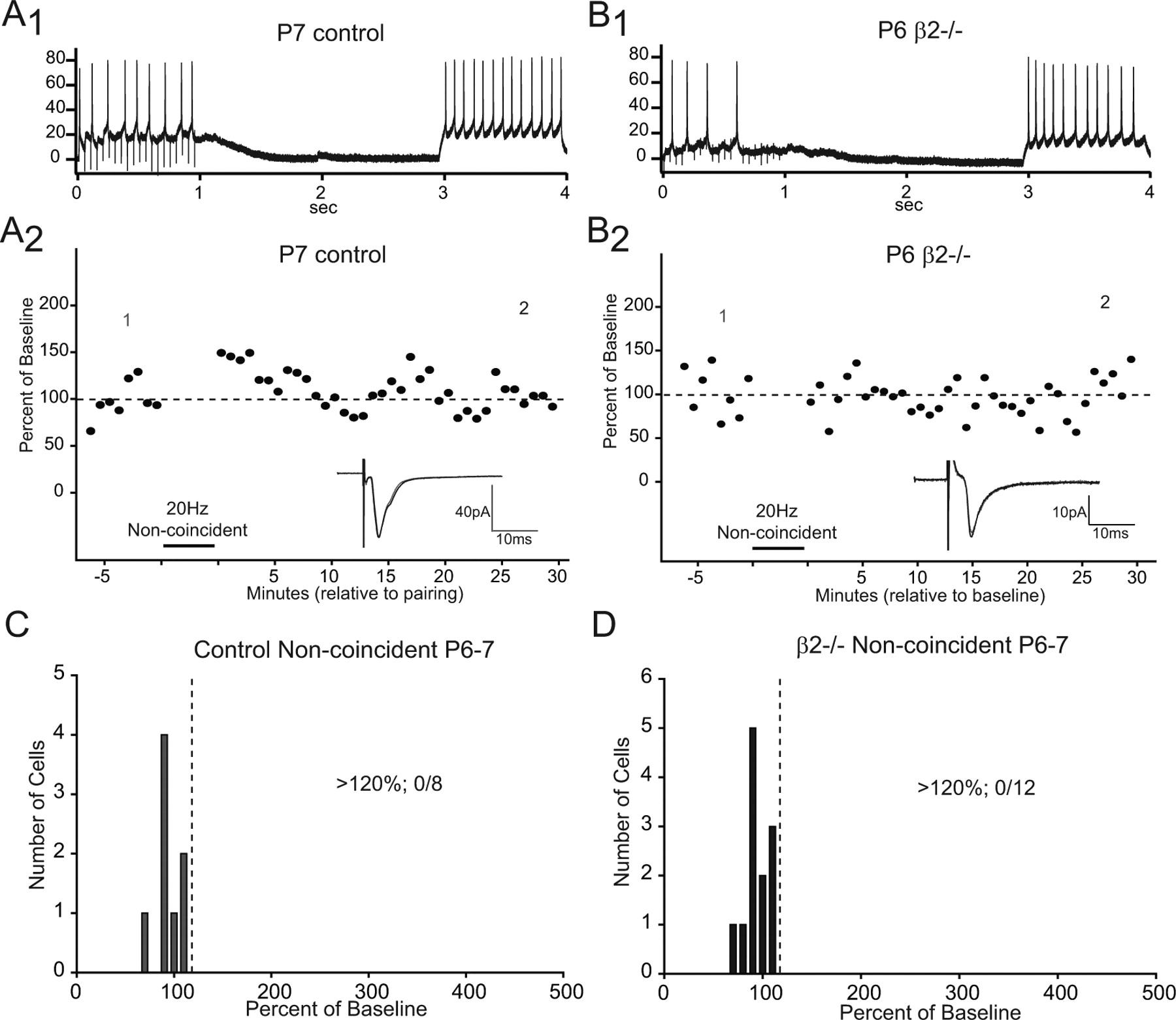Retinocollicular Synapse Maturation and Plasticity Are