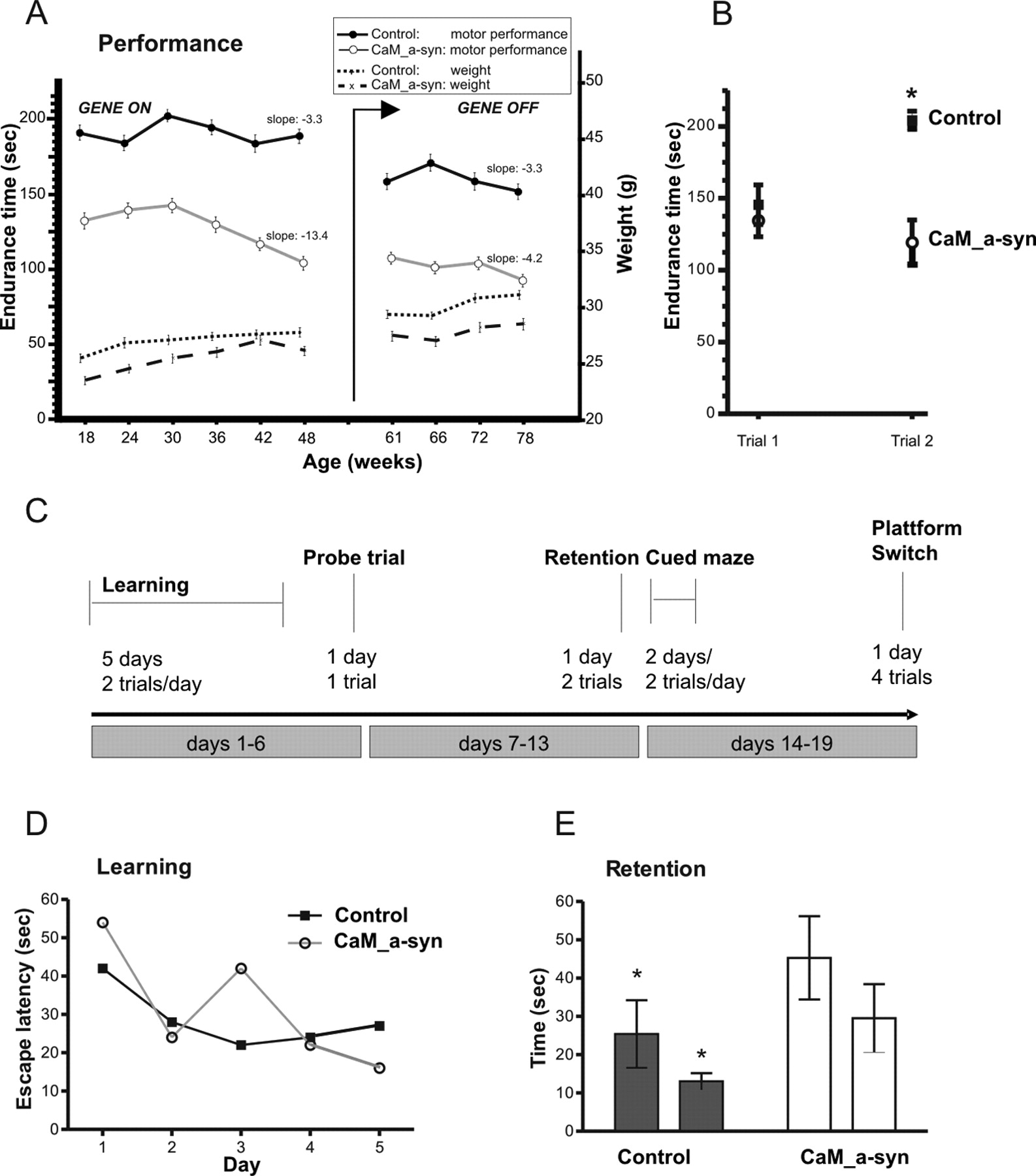 Neurodegeneration And Motor Dysfunction In A Conditional Model Of
