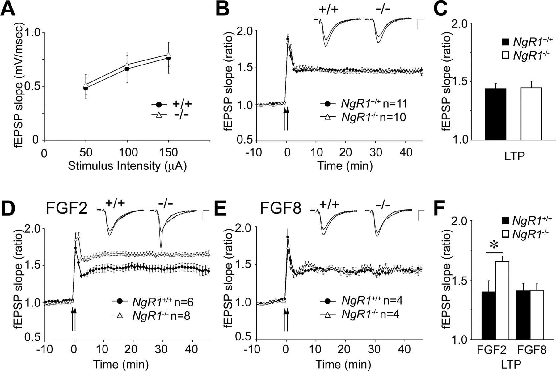 Synaptic Function for the Nogo-66 Receptor NgR1: Regulation of ...