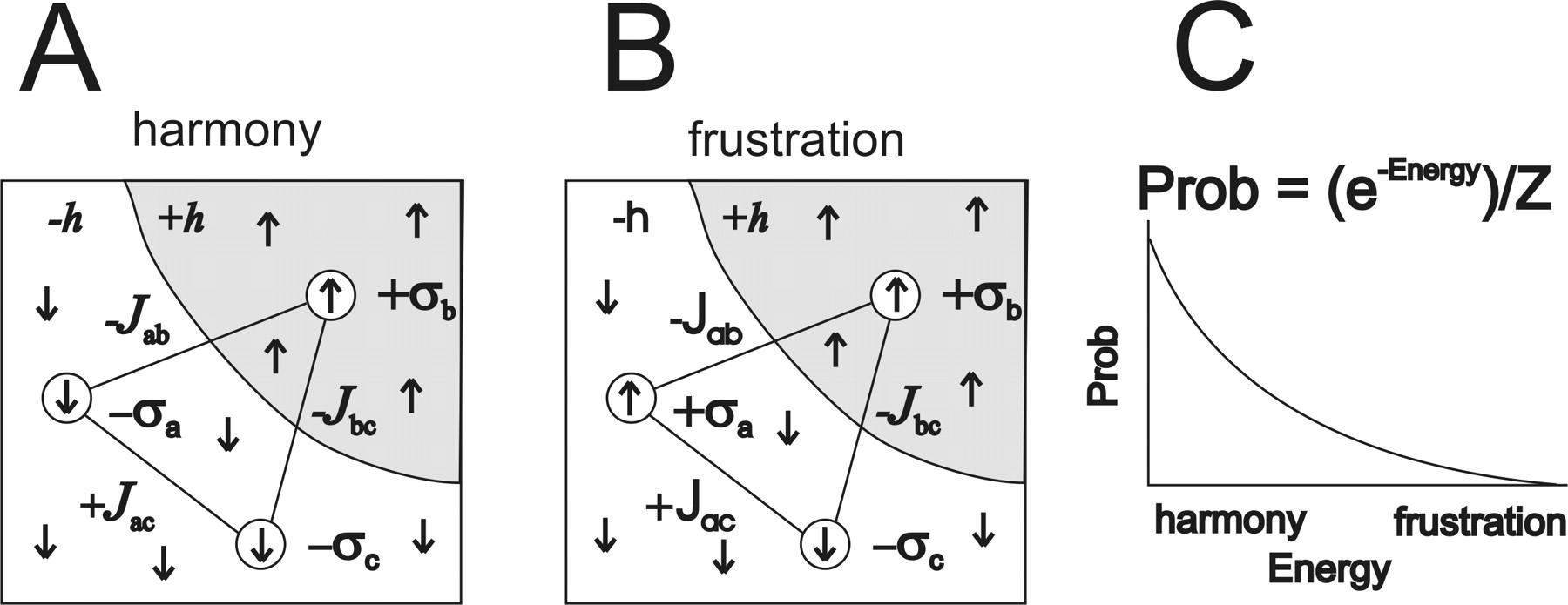 lifshitz équation for magnetic ensemble