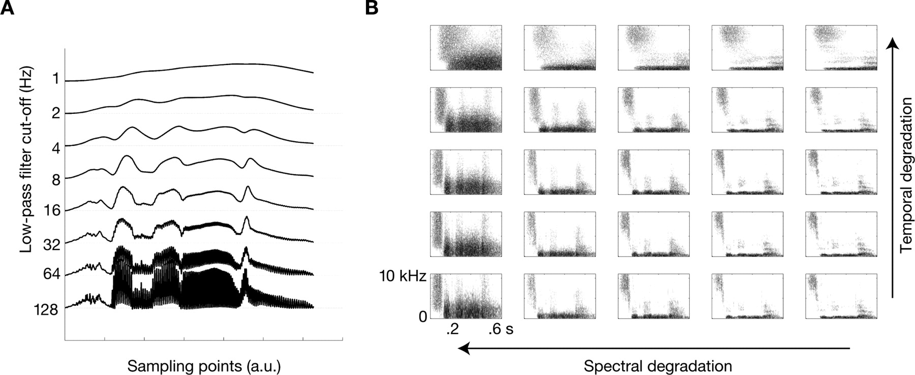 Bilateral Speech Comprehension Reflects Differential