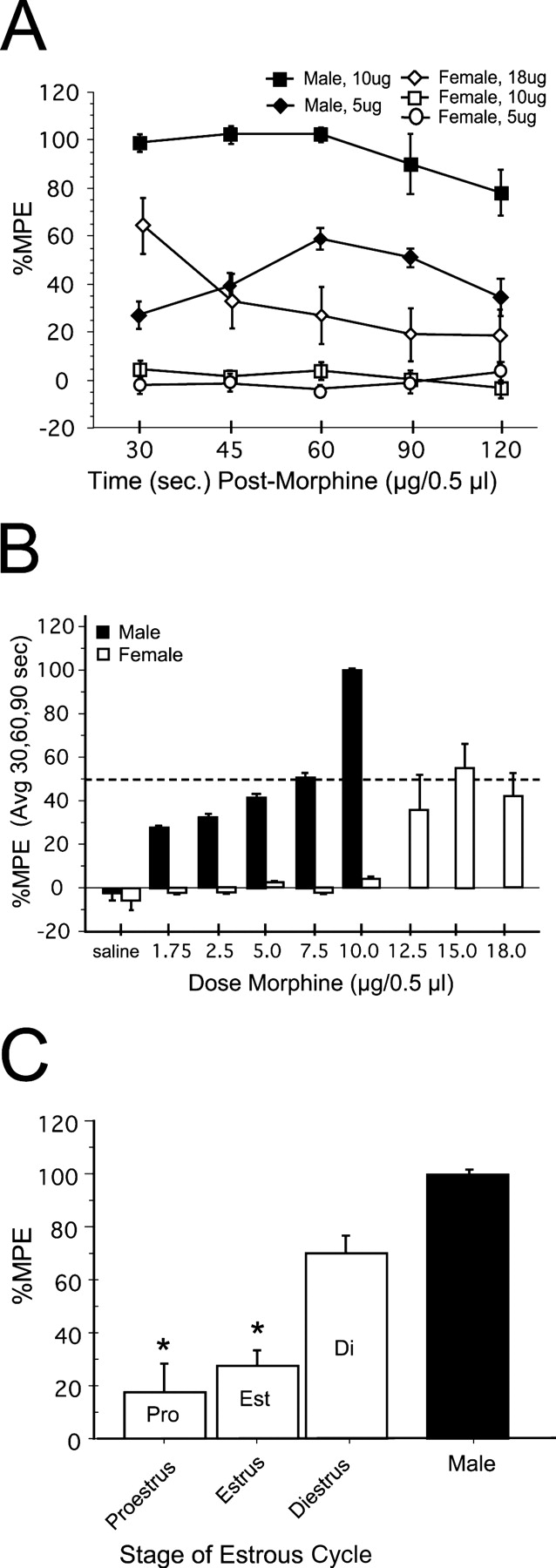 Sex Differences In Opioid Receptor Expression In The Rat Midbrain