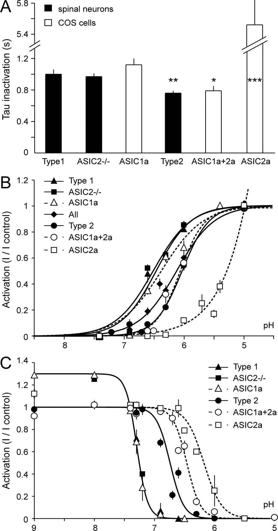 Acid Sensing Ion Channels In Dorsal Spinal Cord Neurons Journal Of
