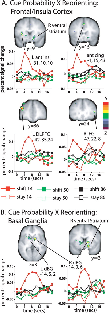 Interaction of Stimulus-Driven Reorienting and Expectation in ...
