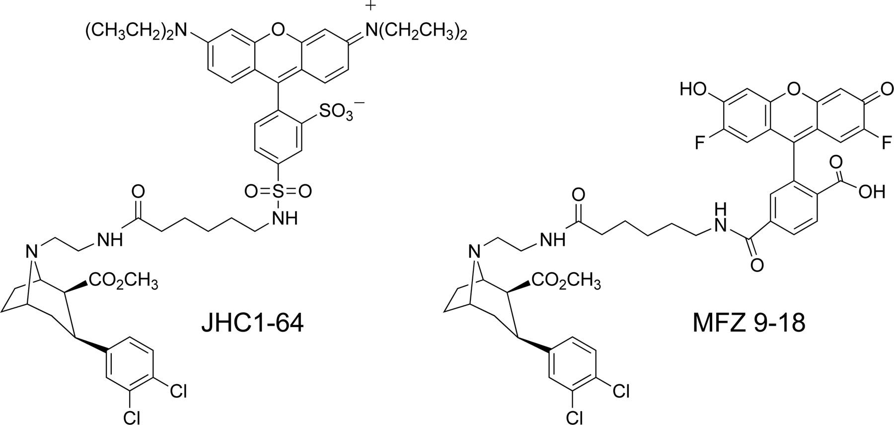 cocaine sythesis