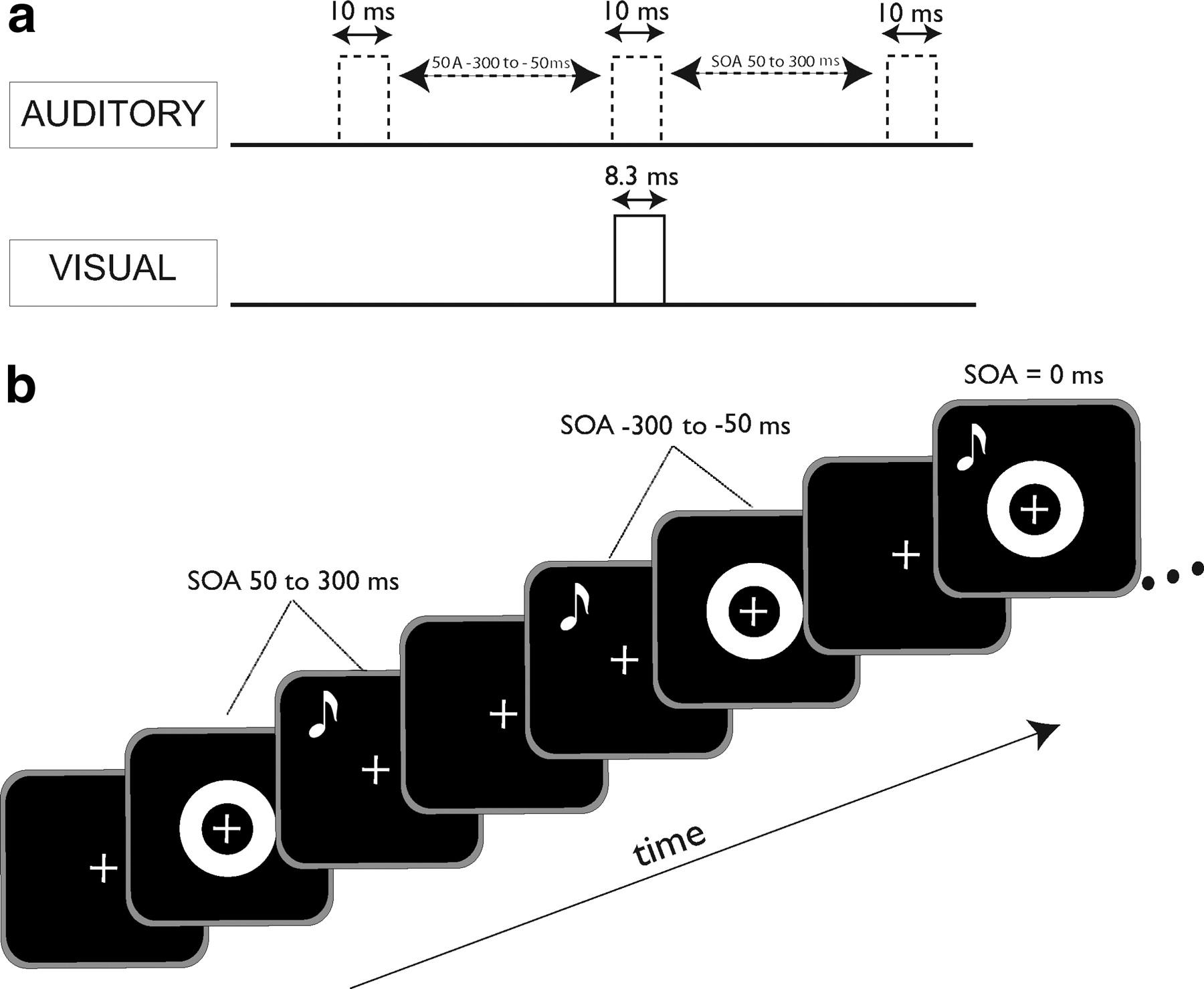 perceptual training narrows the temporal window of multisensory