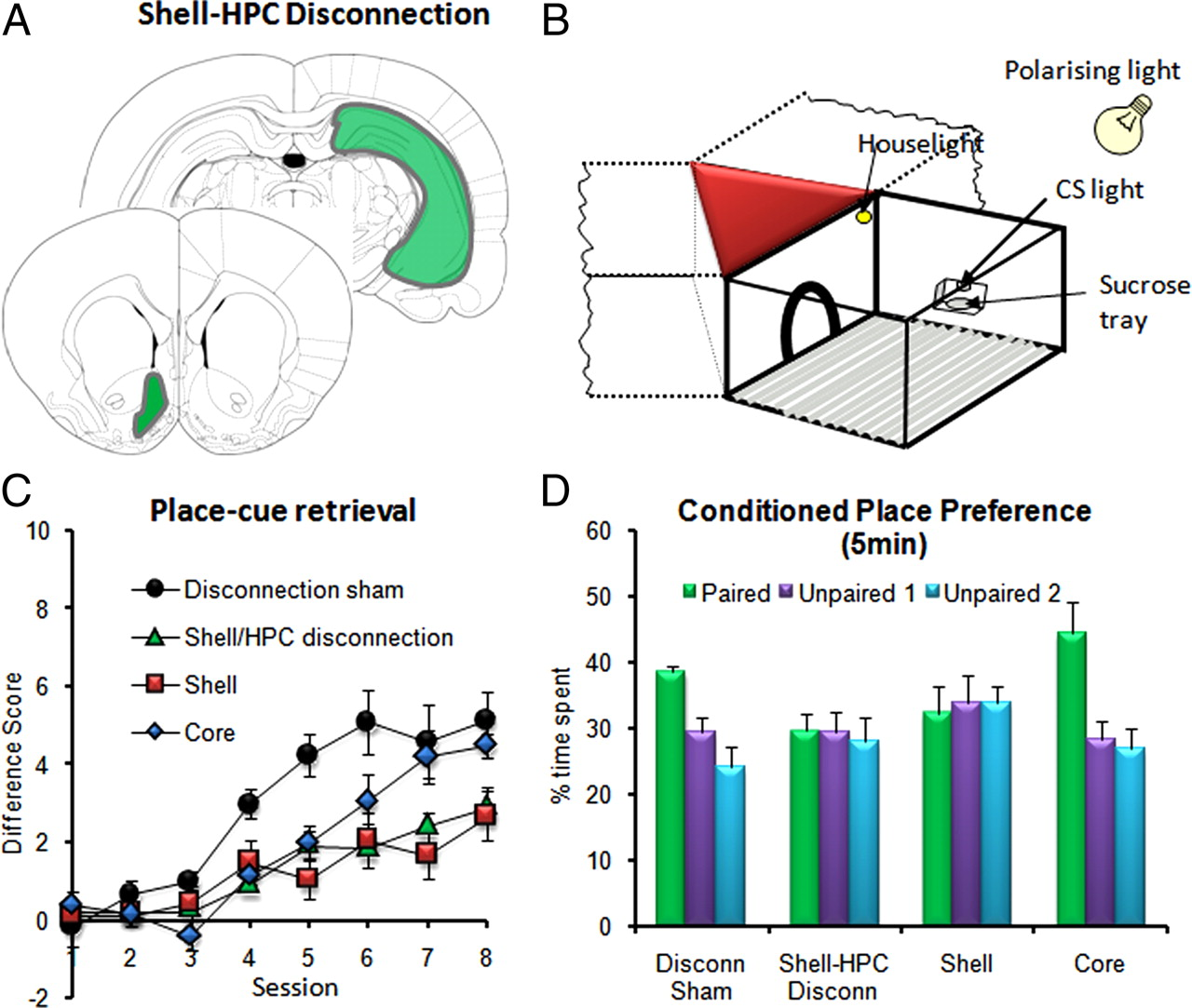 Corticostriatal Interactions During Learning Memory Processing And Fig 2 A Wiring Diagram Of For Ward Reverse Jogging Circuit Download Figure