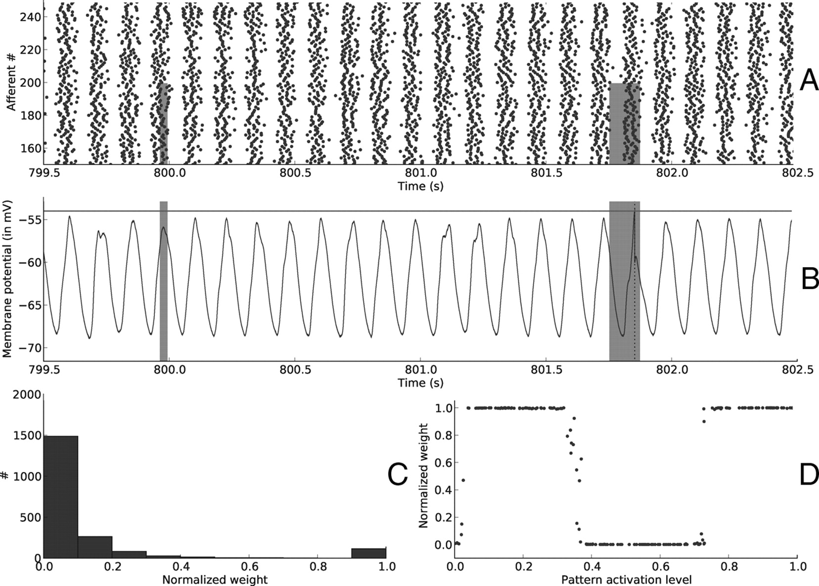 We study oscillations - the phase of oscillations