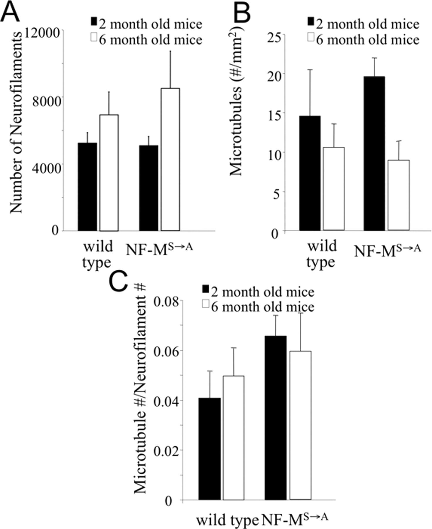 Phosphorylation of Highly Conserved Neurofilament Medium KSP Repeats ...