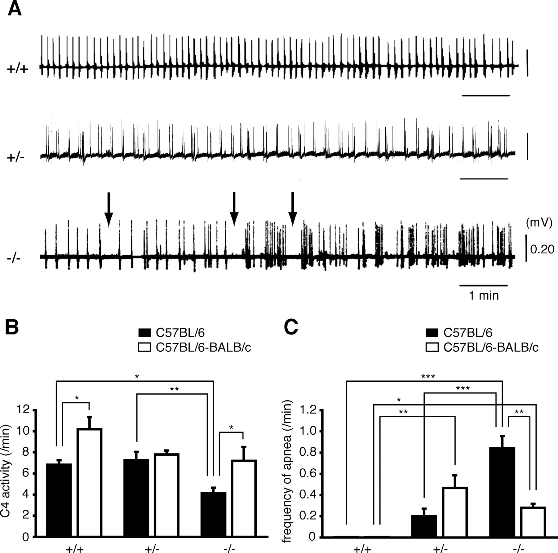 DSCAM Deficiency Causes Loss of Pre-Inspiratory Neuron Synchroneity