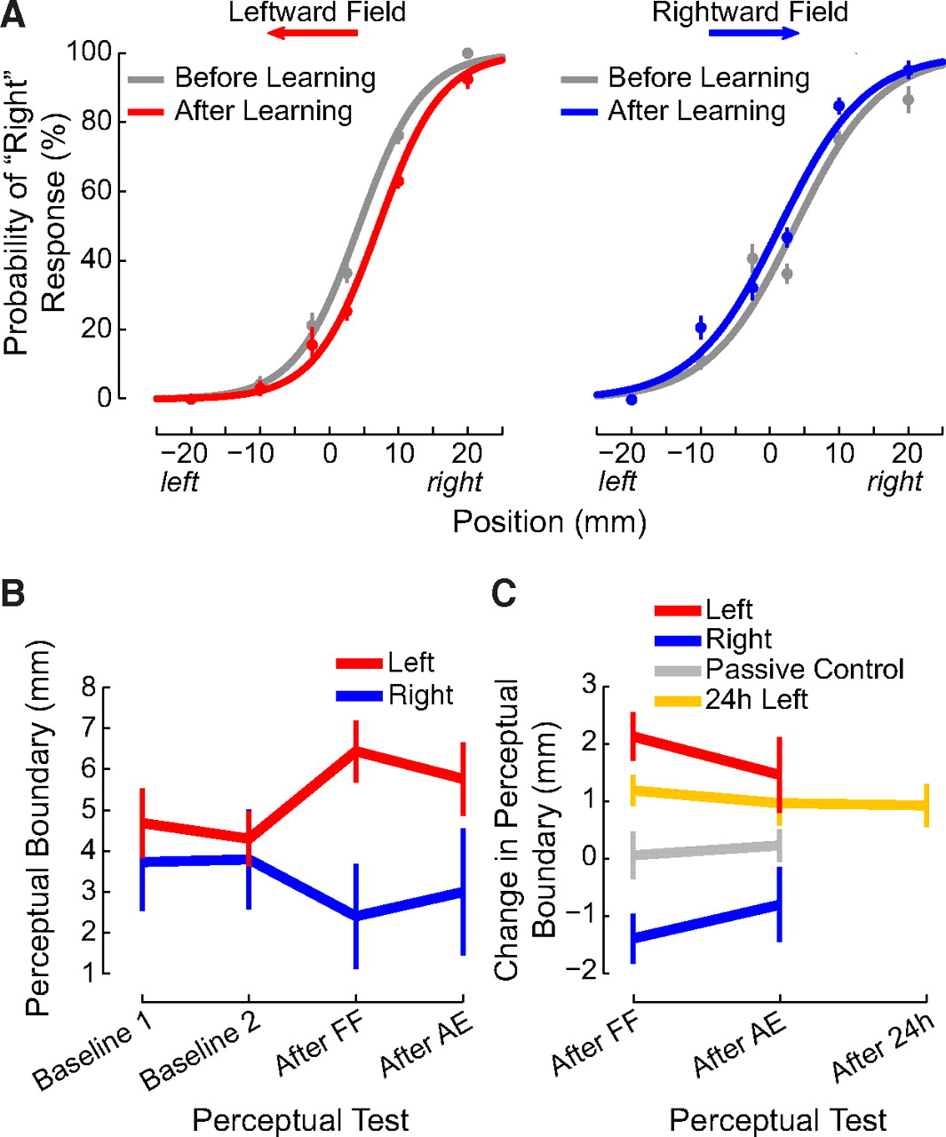 Somatosensory Plasticity and Motor Learning | Journal of Neuroscience