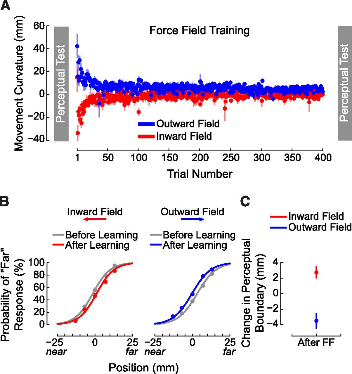 Somatosensory Plasticity and Motor Learning | Journal of Neuroscience