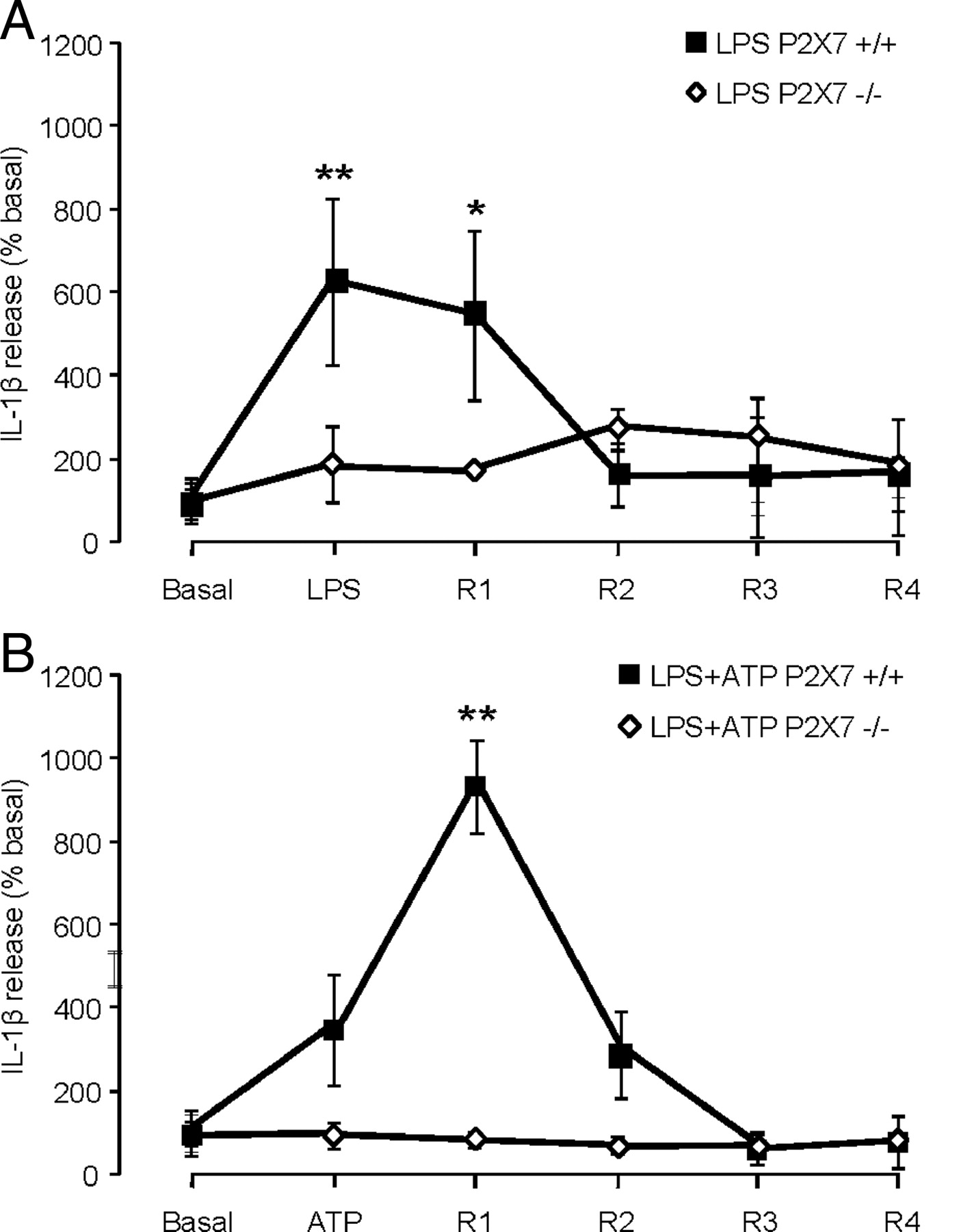 P2X7-Dependent Release of Interleukin-1β and Nociception in