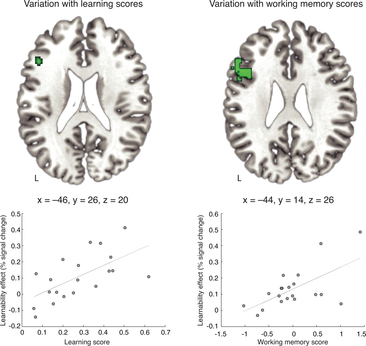 Inferior Frontal Gyrus Activation Predicts Individual Differences in ...