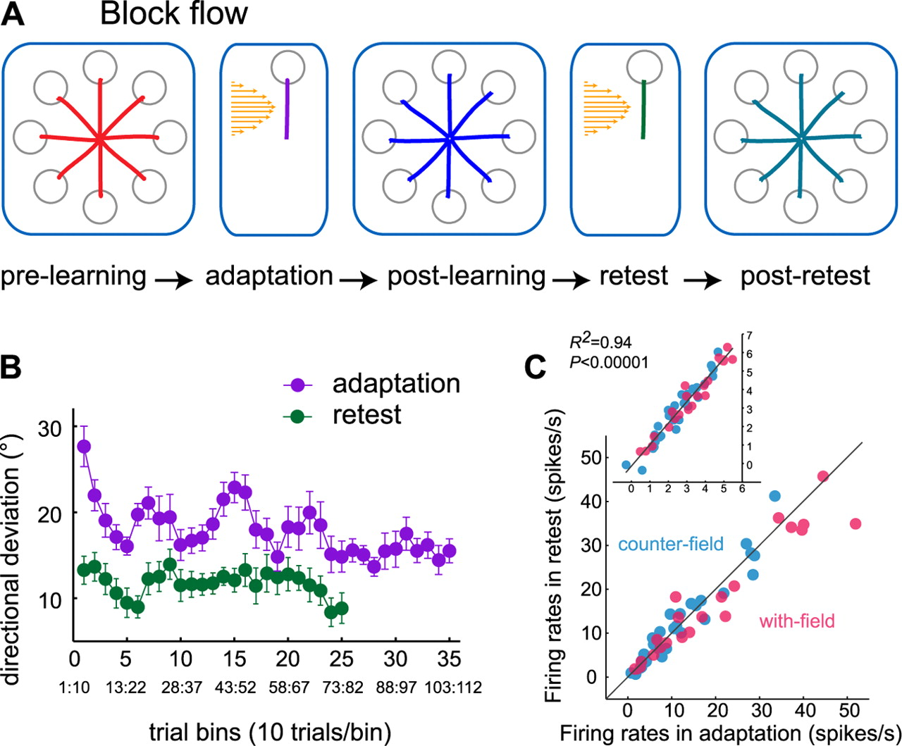 Neuronal correlates of memory formation in motor cortex after download figure pooptronica Gallery