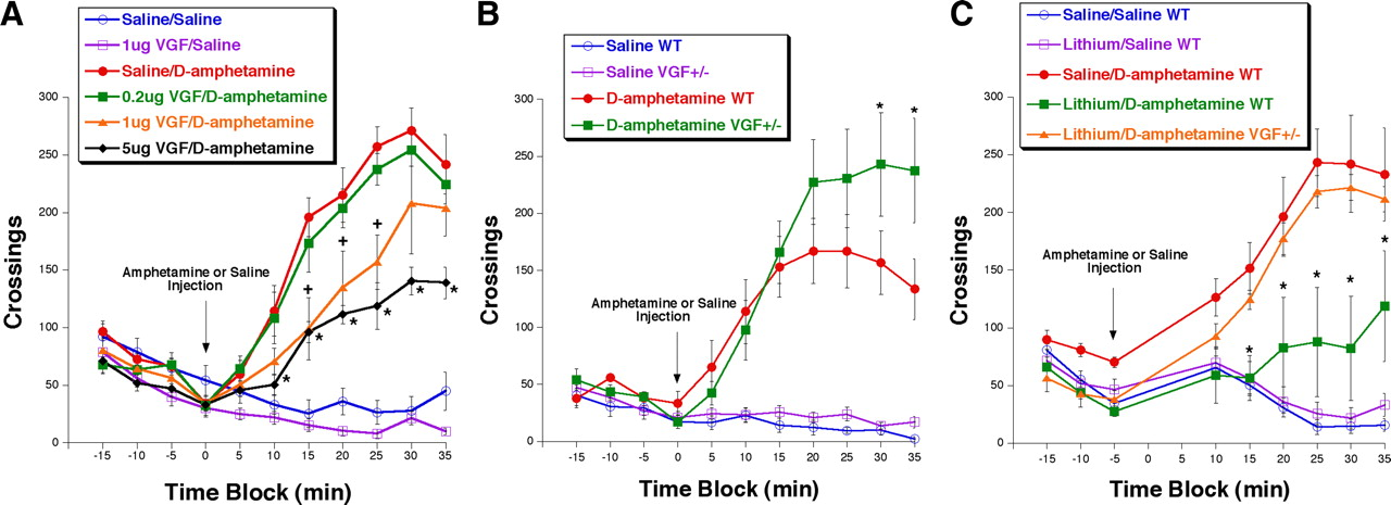 The Neuropeptide VGF Is Reduced in Human Bipolar Postmortem