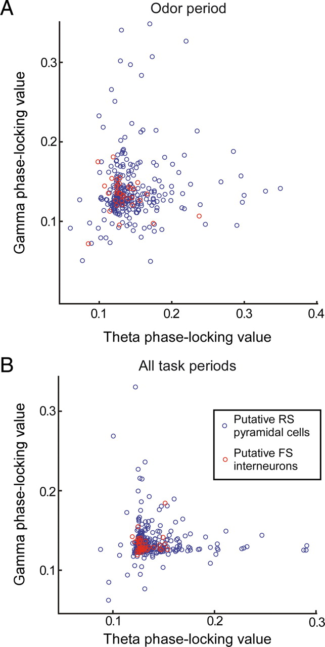 Learning-Associated Gamma-Band Phase-Locking of Action–Outcome