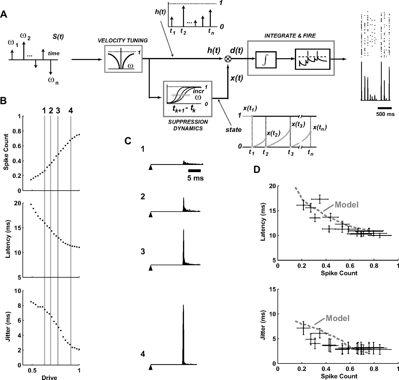 Encoding And Decoding Cortical Representations Of Tactile Features Decoder Encoder Block Diagram Free Download Wiring Schematic Figure Open In New Tab Powerpoint
