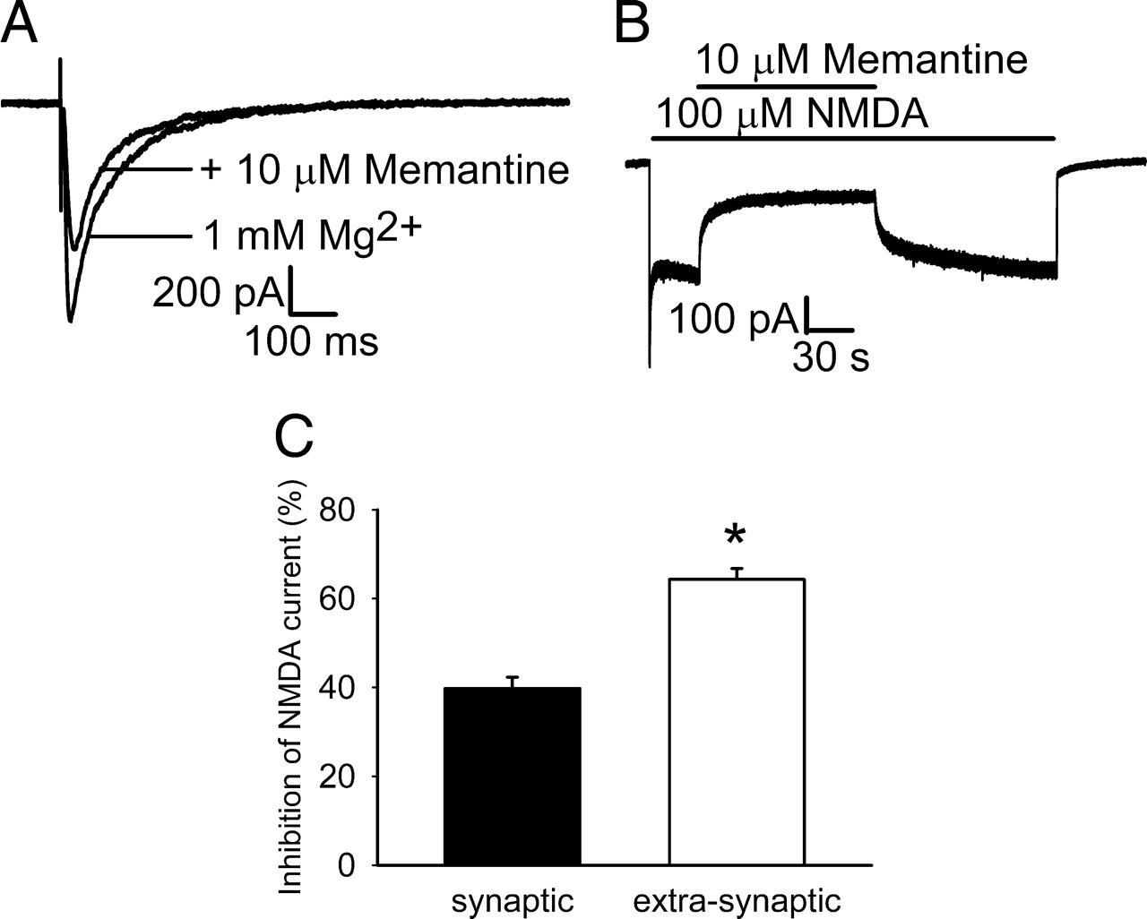 Memantine Preferentially Blocks Extrasynaptic over