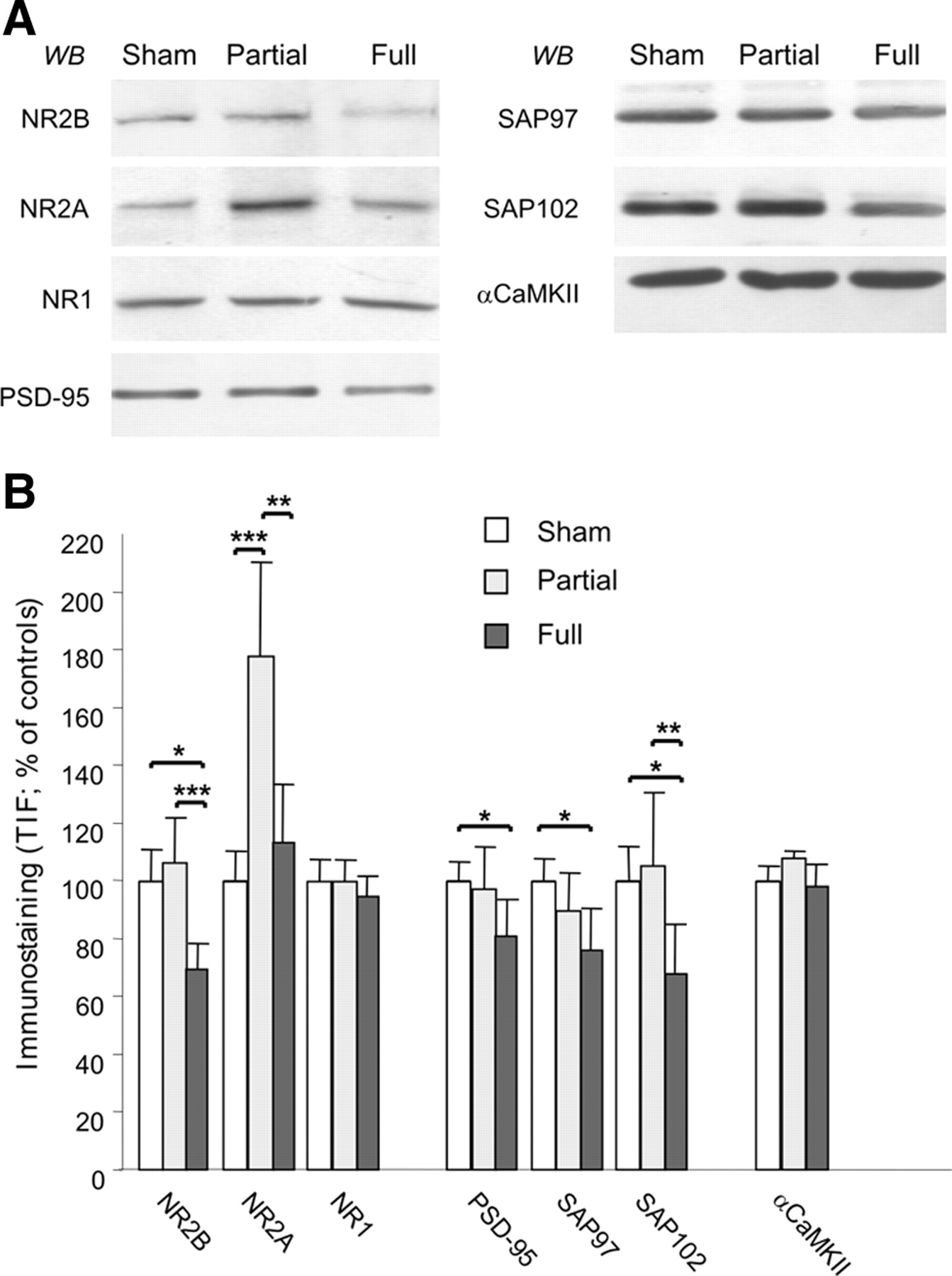 according to figure 9.14, phosphate groups play a key role in receptor kinase activation by: