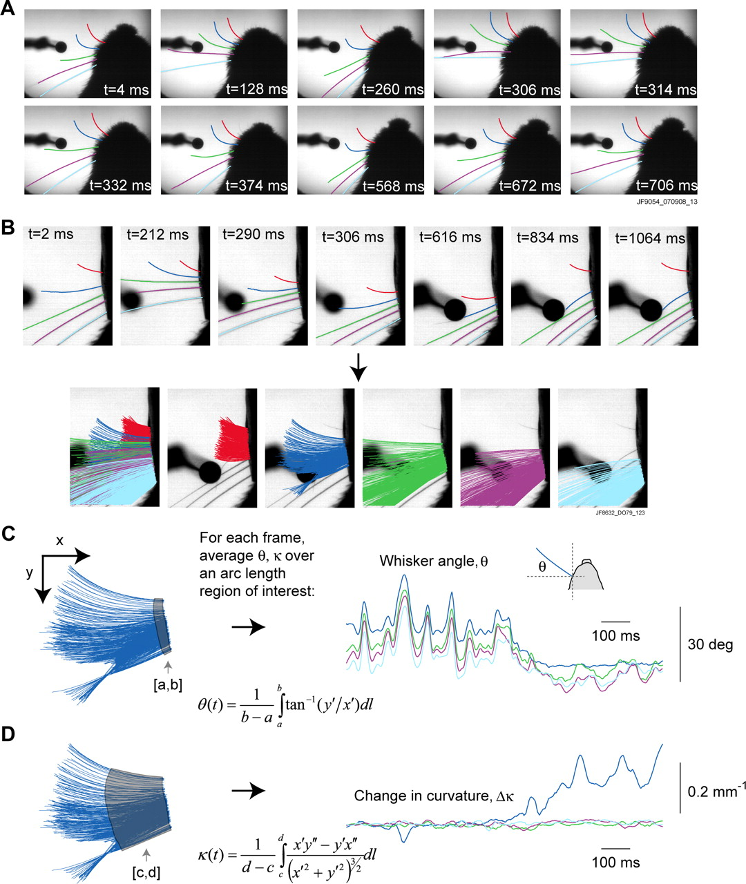 Vibrissa Based Object Localization In Head Fixed Mice Journal Of Nl5 Is Circuit Simulator Software A That Helps Download Figure