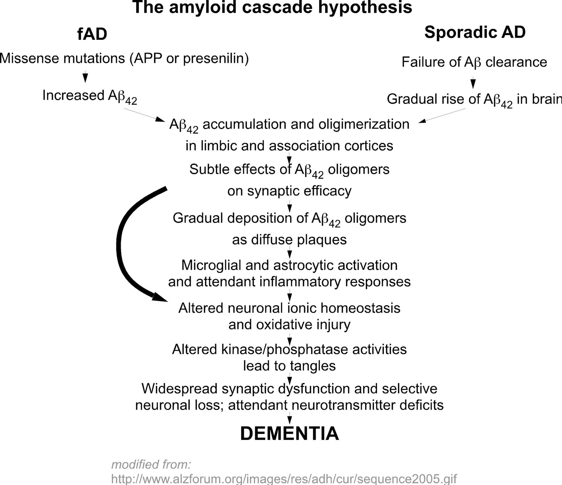 figure 1 the amyloid cascade hypothesis of alzheimers disease