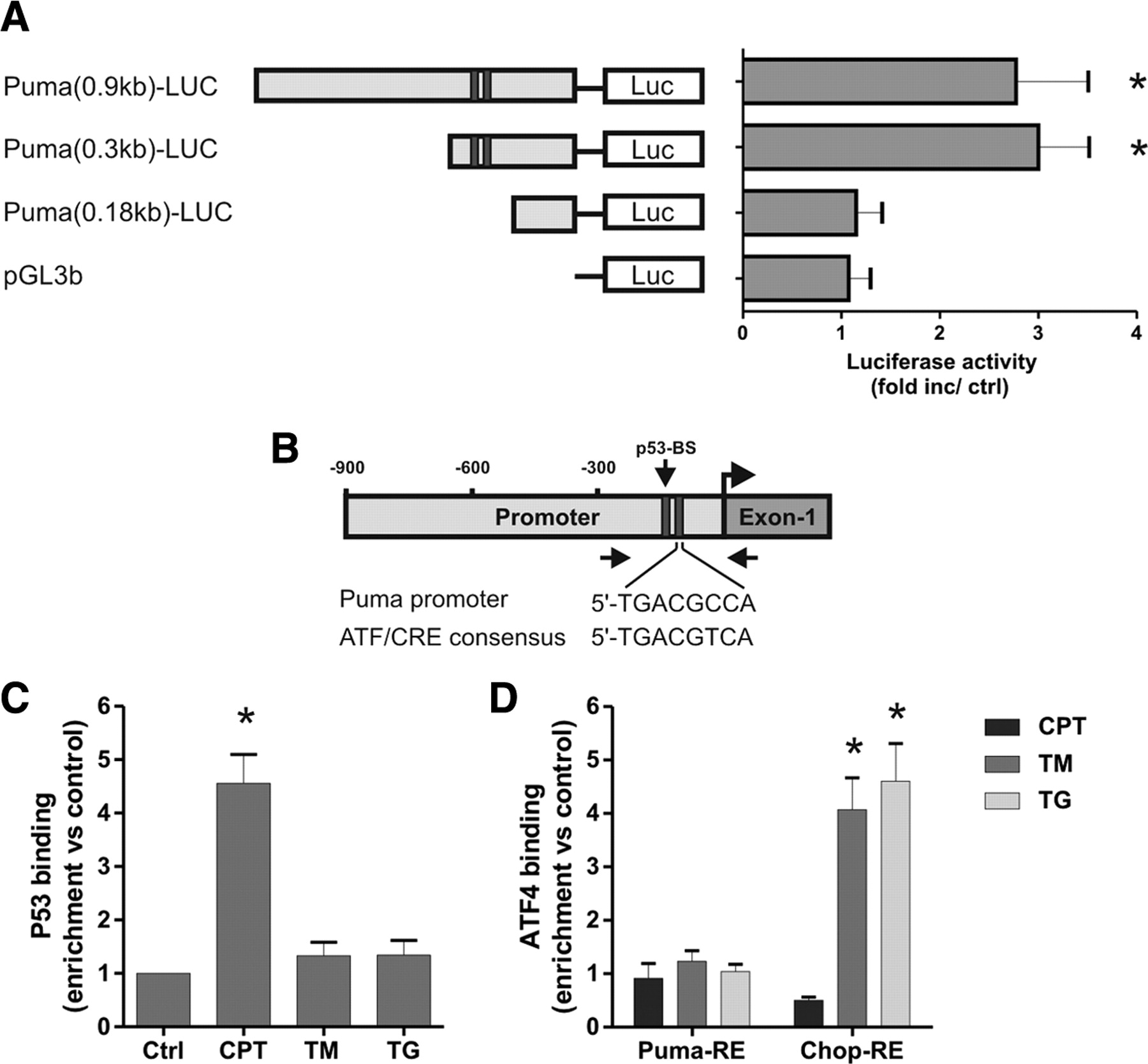 Neuronal Apoptosis Induced By Endoplasmic Reticulum Stress Is Puma 5 Block Diagram Download Figure