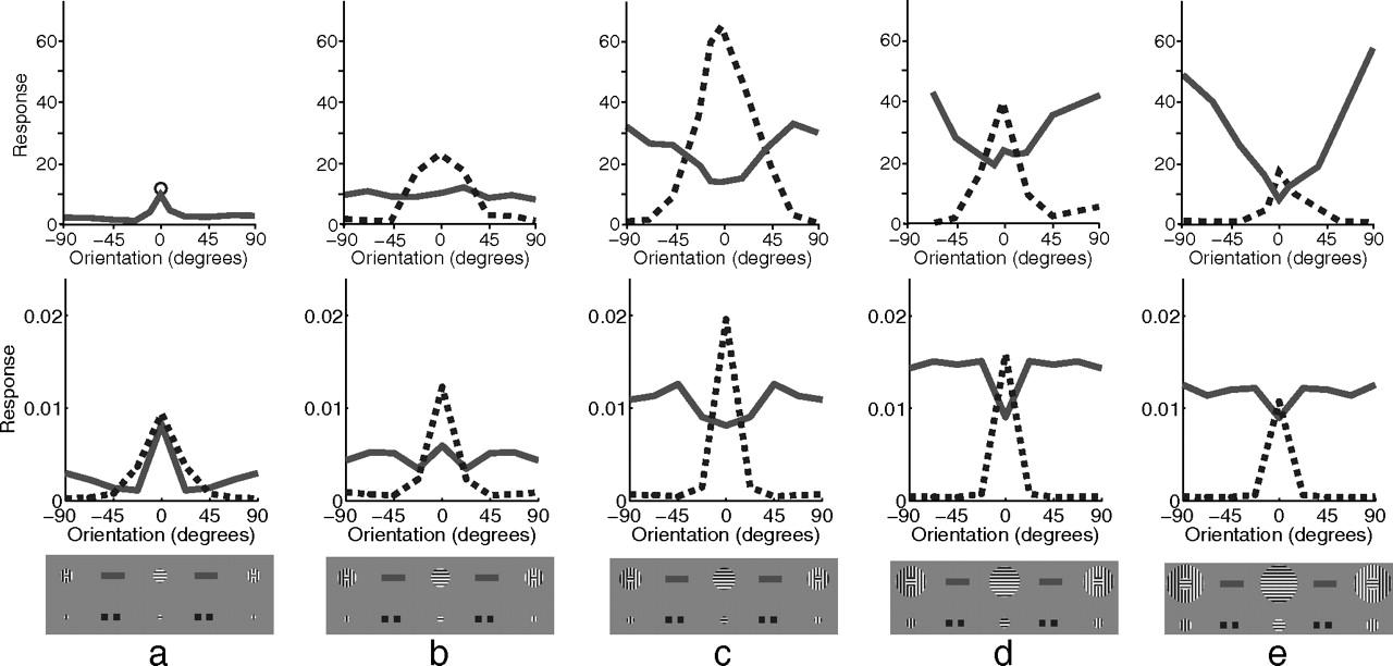 Neocortical column simulation dating