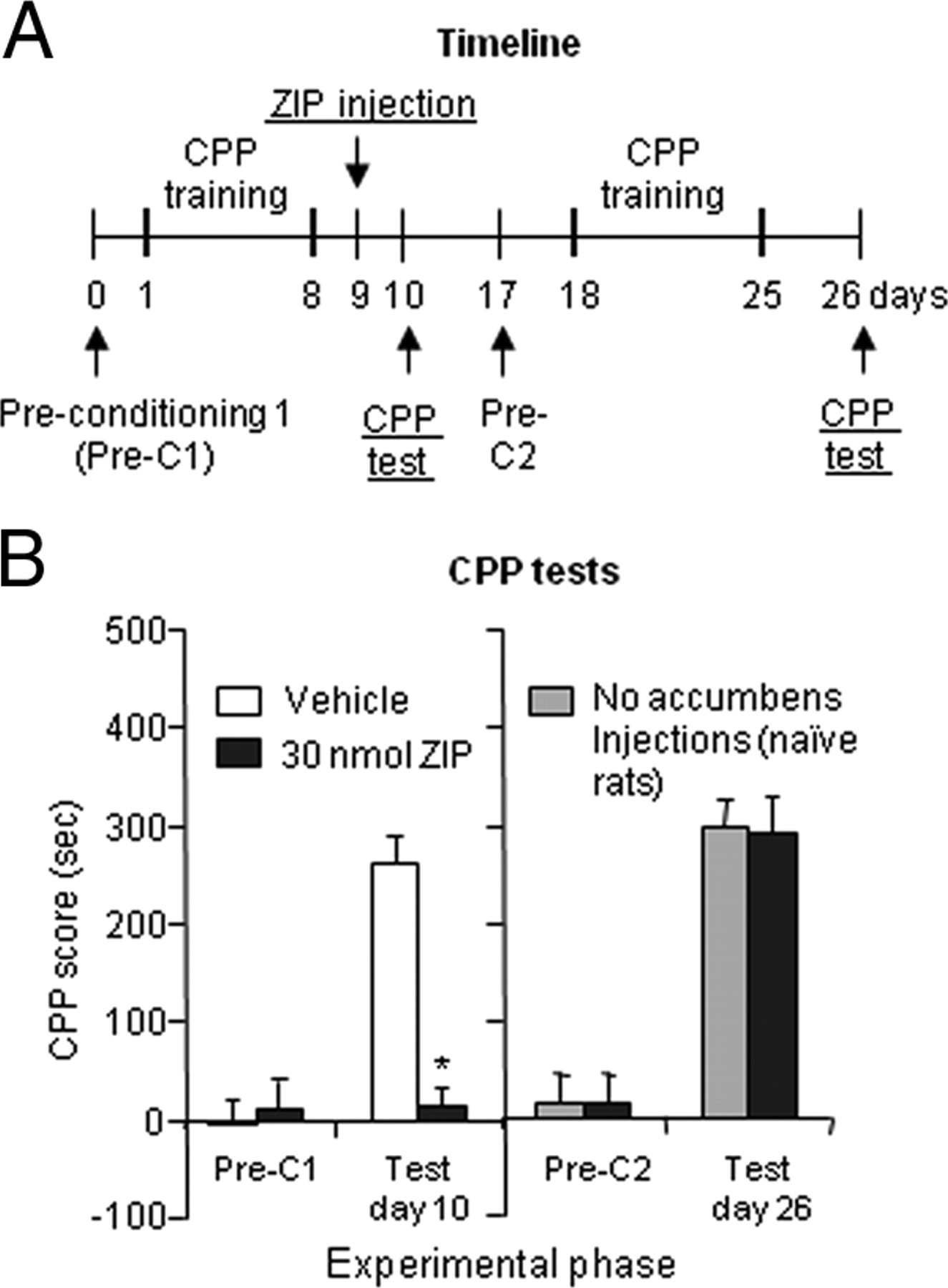 Inhibition of PKMζ in Nucleus Accumbens Core Abolishes Long-Term