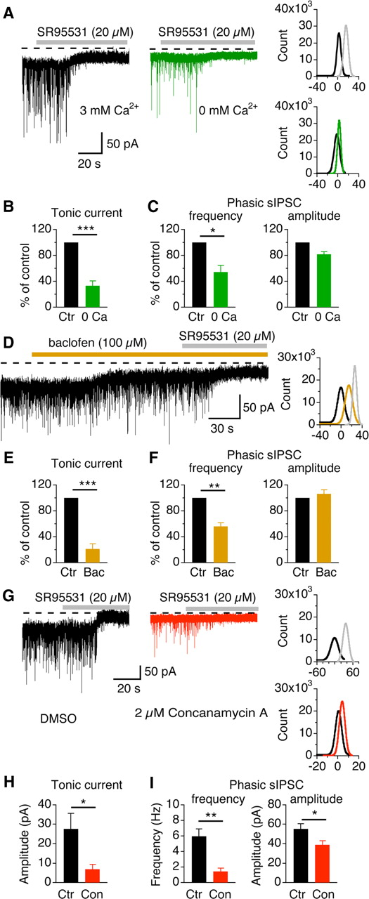 Ambient GABA-Activated Tonic Inhibition Sharpens Auditory