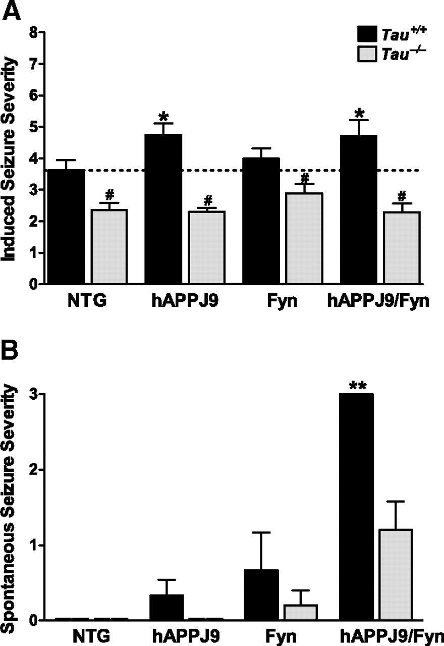 Amyloid-β/Fyn–Induced Synaptic, Network, and Cognitive